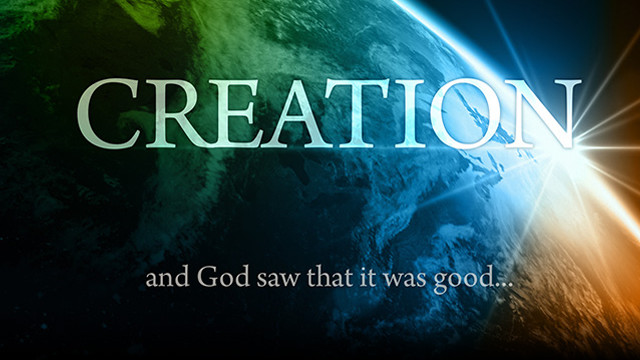 Creation - The Documentary